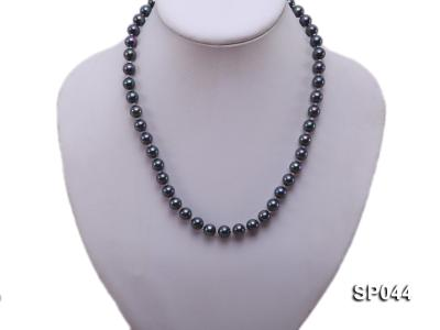8mm black round seashell pearl necklace with white gilded clasp SP044 Image 5