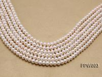 Wholesale 7x8.5mm Classic White Flat Cultured Freshwater Pearl String FPW003