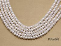 Wholesale 7x9mm White Flat Freshwater Pearl String FPW016