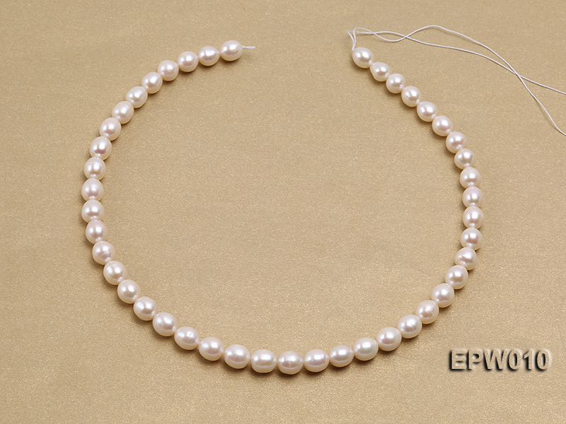 wholesale 8.5x9.5mm white elliptical freshwater pearl strings  big Image 4