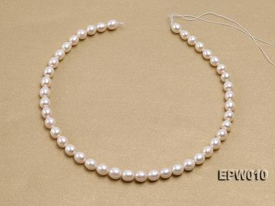 wholesale 8.5x9.5mm white elliptical freshwater pearl strings  EPW010 Image 4
