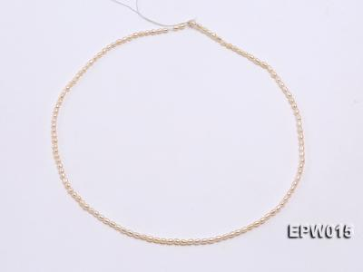 Wholesale 2.5x3mm  Rice-shaped Freshwater Pearl String EPW015 Image 3