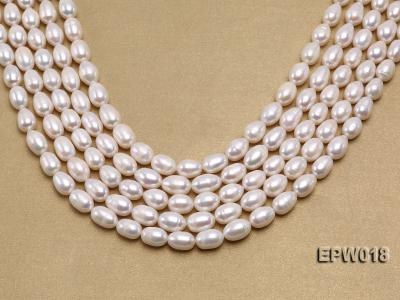 Wholesale 8.5X13mm Classic White Rice-shaped Freshwater Pearl String EPW018 Image 1
