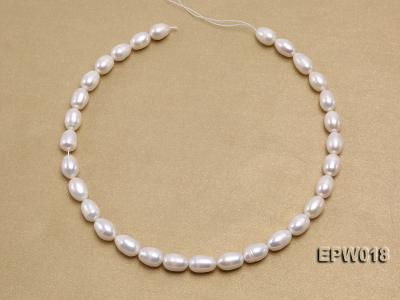 Wholesale 8.5X13mm Classic White Rice-shaped Freshwater Pearl String EPW018 Image 3
