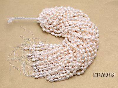 Wholesale 8.5X13mm Classic White Rice-shaped Freshwater Pearl String EPW018 Image 4