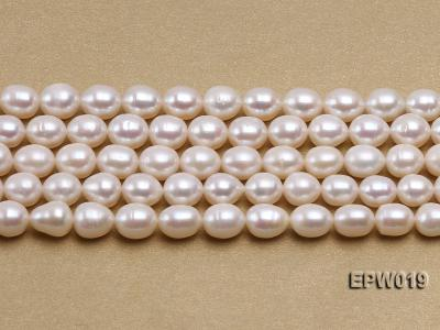 Wholesale 8.5x9mm Classic White Rice-shaped Freshwater Pearl String EPW019 Image 2
