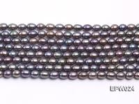 Wholesale 5X6.5mm  Rice-shaped Freshwater Pearl String EPW024