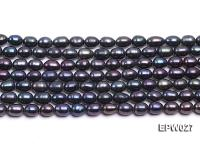 Wholesale 5.5X6.5mm Black Rice-shaped Freshwater Pearl String EPW027