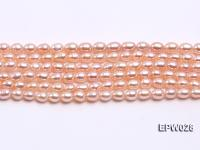 Wholesale 5x6.5mm Rice-shaped Freshwater Pearl String  EPW028