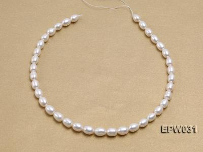 Wholesale 8X9mm Classic White Rice-shaped Freshwater Pearl String EPW031 Image 3