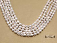 Wholesale 8X9mm Classic White Rice-shaped Freshwater Pearl String EPW031