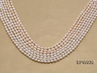 Wholesale 4.5X6mm  Rice-shaped Freshwater Pearl String  EPW036