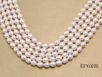 Wholesale 9X11mm Classic White Rice-shaped Freshwater Pearl String EPW038