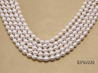 Wholesale 7-8mm Classic White Rice-shaped Freshwater Pearl String EPW039
