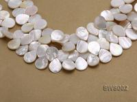 Wholesale 13x15mm White Drip-shaped Seashell String SWS002