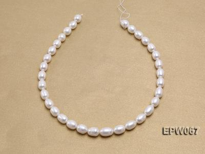 Wholesale 9.5x13mm Classic White Rice-shaped Freshwater Pearl String EPW067 Image 3