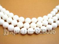 wholesale 14mm round tridacna semi-finished products GTS005