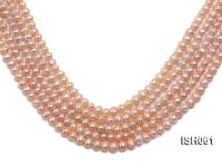 Wholesale 6x8mm Pink  Flat Freshwater Pearl String ISH061