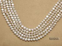 Wholesale 7x8mm Classic White Flat Freshwater Pearl String ISH066