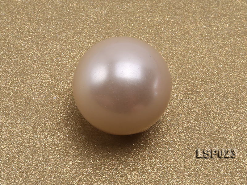 Wholesale 10-11mm White Round Seashell Pearl Bead  big Image 3