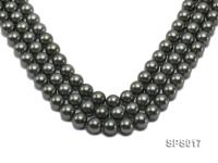 Wholesale 12mm Black Green Round Seashell Pearl String SPS017