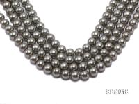Wholesale 12mm Round Olive Seashell Pearl String SPS018