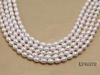 Wholesale 9x12mm Classic White Rice-shaped Freshwater Pearl String EPW070