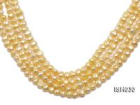 Wholesale 6x8mm Yellow Flat  Freshwater Pearl String ISH030
