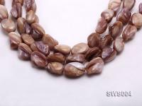 Wholesale 13x20 Irregular Seashell String SWS004