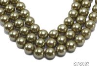 Wholesale 20mm Round Olive Seashell Pearl String SPS007