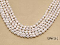 Wholesale AAA-grade 8.5X10.5mm Classic White Rice-shaped Freshwater Pearl String EPW090