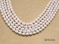 Wholesale 9.5x12mm Classic White Rice-shaped Freshwater Pearl String EPW151