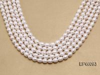 Wholesale A-grade 9x11mm Classic White Rice-shaped Freshwater Pearl String EPW093