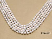 Wholesale 8.5x10.5mm Classic White Rice-shaped Freshwater Pearl String EPW098