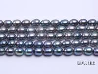 Wholesale A-grade 8x12mm Black Rice-shaped Freshwater Pearl String EPW102