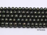 Wholesale 11-12mm Flat Cultured Freshwater Pearl String FPW088