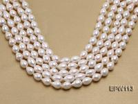Wholesale 10x15mm White Rice-shaped Freshwater Pearl String EPW113