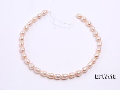 Wholesale 9x12mm pink Rice-shaped Freshwater Pearl String EPW116 Image 3