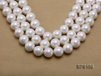 Wholesale Super-size 20mm White Round Seashell Pearl String SPS156