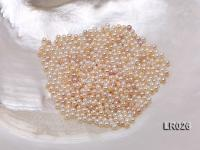 High-quality 2mm Round Cream/Lavender Loose Freshwater Pearl  LR026