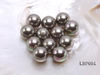 Wholesale 20mm Silver Round Seashell Pearl Bead LSP094