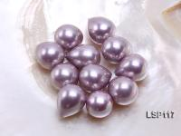 Wholesale 117X23mm Teardrop Loose Seashell Pearl  LSP117