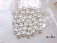 Wholesale 10X13mm Teardrop Loose Seashell Pearl  LSP124