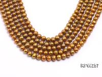 Wholesale 8.5-9mm Golden Round Freshwater Pearl String RPW257