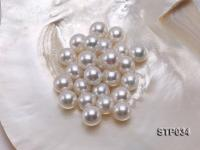 14-14.5mm White Round South Sea Pearl STP034