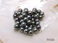 11-12mm Black Round Loose Tahitian Pearls  TP235