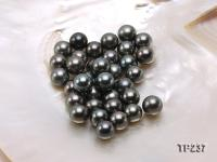 12-12.5mm Black Round Loose Tahitian Pearls  TP237