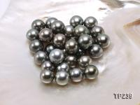 14-15mm Black Round Loose Tahitian Pearls  TP239