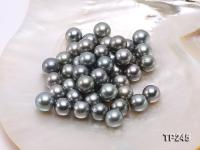 13-14mm Black Round Loose Tahitian Pearls  TP245