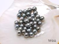 12-13mm Black Round Loose Tahitian Pearls  TP246